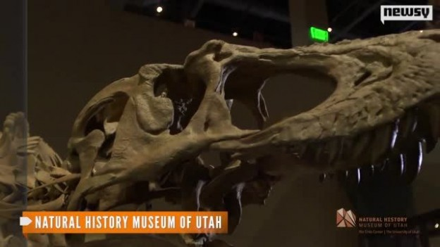 Scientists_Discover_a__King_of_Gore__T._Rex_Relative.jpg