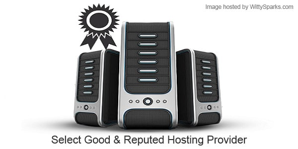 Good and Reputed Hosting Provider