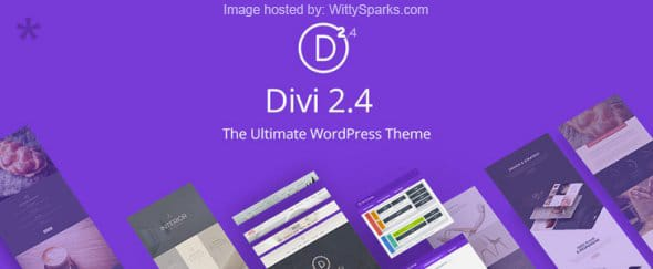 Divi - Business WordPress Theme