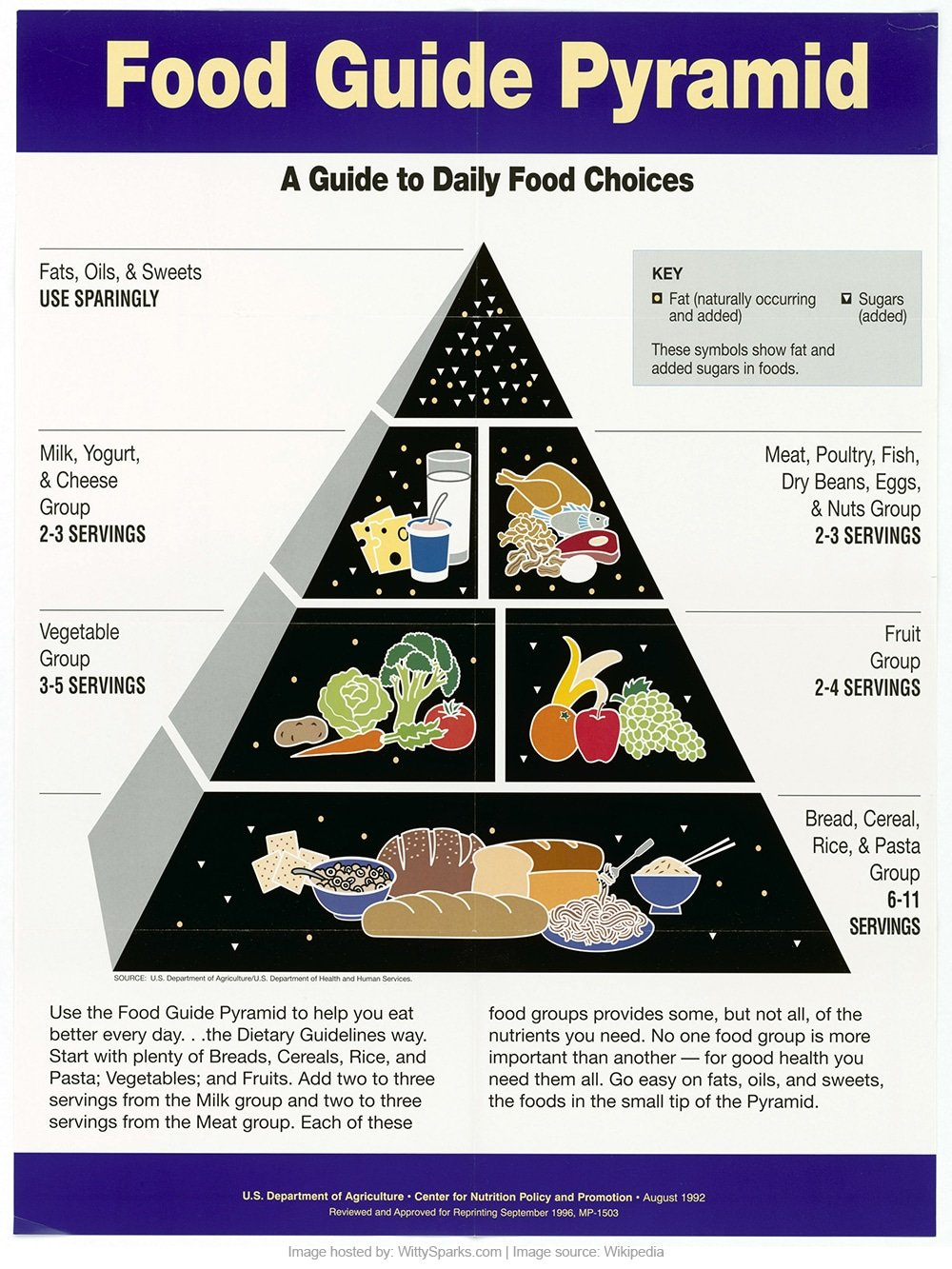A Guide to Daily Food Choices