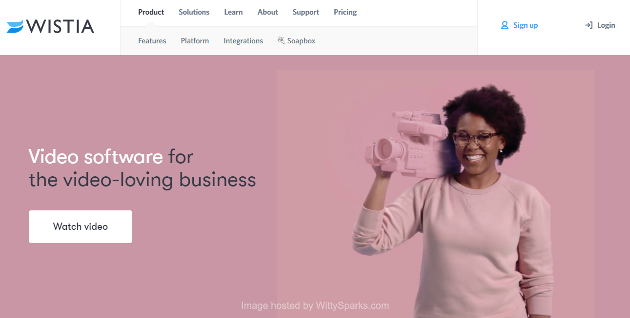 Wistia: Video Hosting for Business
