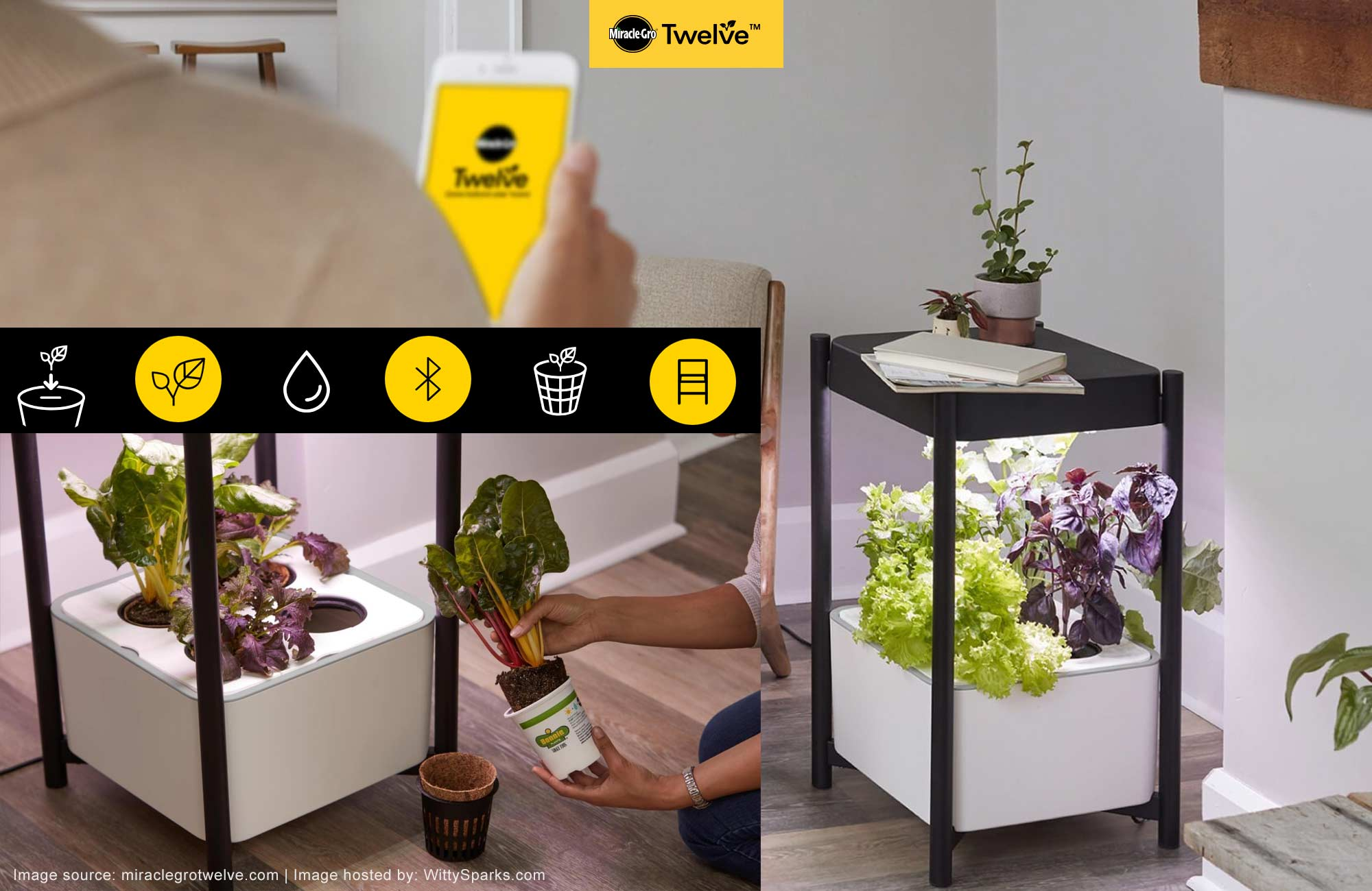 Make miracles indoors with Miracle-Gro® Twelve